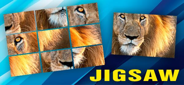 Puzzler Jigsaw